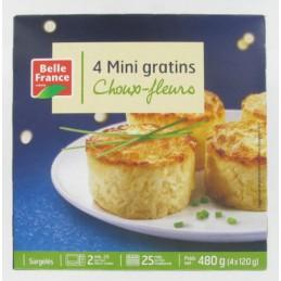 MINI GRATINS DE CHX-FLEURS...