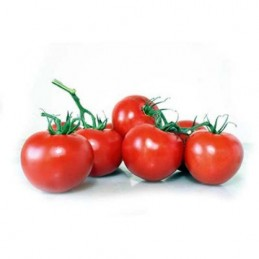 TOMATE GRAPPE KG