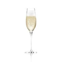 Champagnes, vins effervescents